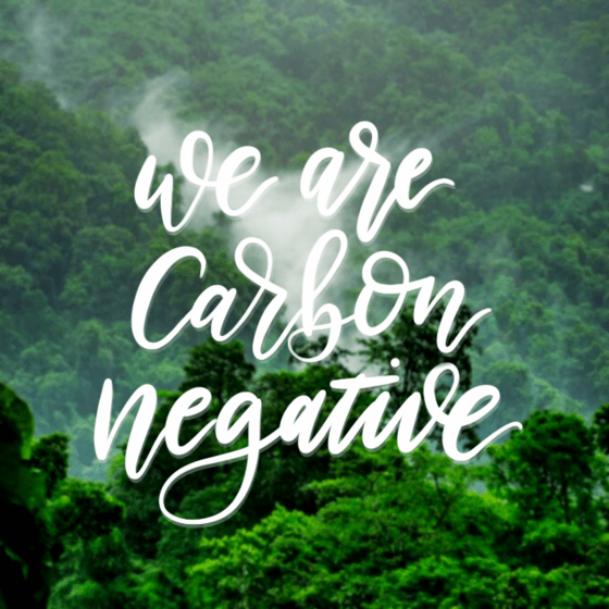 We are Carbon Negative